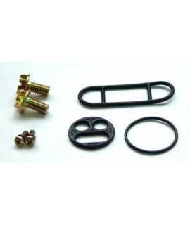 Kit réparation de robinet d'essence TOURMAX